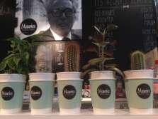 Maurice Coffee